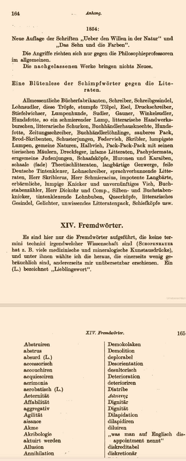 Schopenhauers Schimpfwörter-Liste gegen Philosophieprofessoren