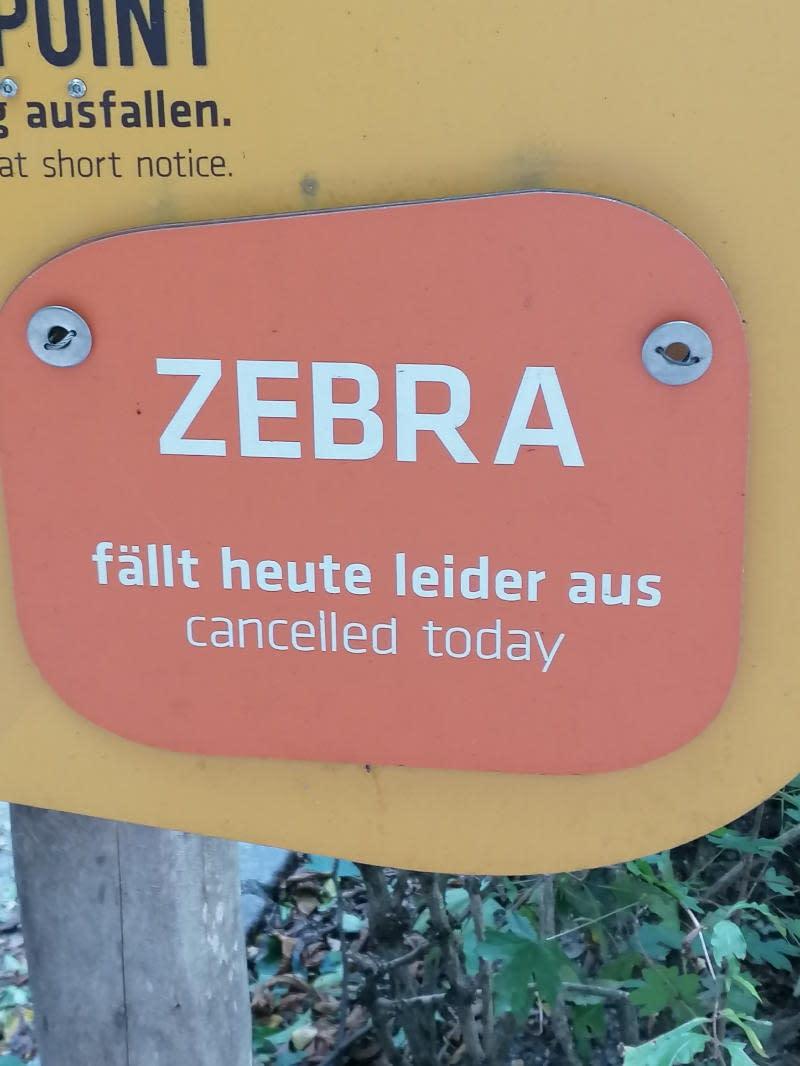Zebra fällt heute leider aus